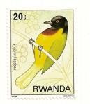 Sellos del Mundo : Africa : Rwanda : Aves de la selva Nyungwe. Ploceus alienus.