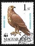 Sellos de Europa - Hungría -  Aguila