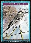 Sellos de Africa - Guinea Ecuatorial -  Motacilla alba