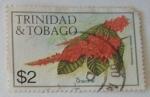 Sellos de America - Trinidad y Tobago -  CHACONIA