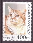 Sellos de Asia - Azerbaiyán -  serie- Gatos