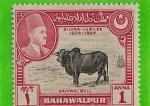 Sellos del Mundo : Asia : Pakistán : agricultura y ganaderia