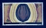 Sellos de Europa - España -  Cacao
