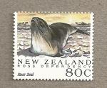 Sellos de Oceania - Nueva Zelanda -  Dependencia de Ross , Foca de Ross