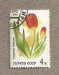 Sellos de Europa - Rusia -  Flora de las estepas rusas