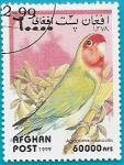 Sellos del Mundo : Asia : Afganistán : AVES - Agapornis roseicollis