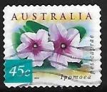 Sellos de Oceania - Australia -  Beach Morning Glory