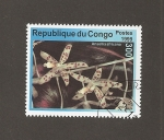 Sellos de Africa - República del Congo -  Flor Amsellia