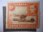 Sellos de Africa - Uganda -  Lake Naivasha -África del Este Británica-Serie:King George VI - Uganda, Kenia, Tanganyika