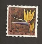 Sellos de Europa - Polonia -  Flor Strelitzia reginae