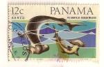 Sellos del Mundo : America : Panamá :  Correo Aereo. Pez martillo.