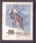 Sellos de Europa - Polonia -  serie- Bosque y montaña