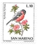 Sellos de Europa - San Marino -  pájaro