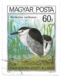 Sellos de Europa - Hungría -  aves