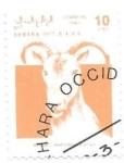Sellos de Africa - Marruecos -  mamíferos