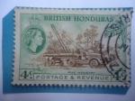 Sellos de America - Honduras -  Honduras Británicas - Serie:Queen Elizabeth II - Industria Pineras- Sector Maderero.