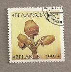 Sellos del Mundo : Europa : Bielorrusia : Cerámica