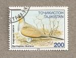 Sellos del Mundo : Asia : Tayikistán : Ave