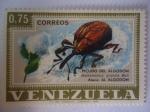 Sellos de America - Venezuela -  Picudo del Algodón - Anthonomus grandis Boh - Ataca:Al Algodón.