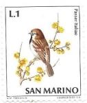 Sellos de Europa - San Marino -  aves