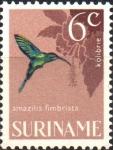 Sellos del Mundo : America : Surinam : AVES.  ESMERALDA  DE  GARGANTA  BRILLANTE.
