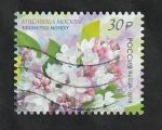 Sellos del Mundo : Europa : Rusia :  7914 - Flor de Rusia, syringa vulgaris