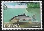 Sellos de Europa - España -  Peces -Barbus barbus)