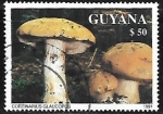 Sellos del Mundo : America : Guyana : Setas - Cortinarius Glaucopus