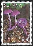 Sellos de America - Guyana -  Setas - Laccaria amethystina