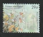 Sellos de Europa - Rusia -  7812 - Flor, Erythronium caucasicum