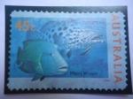 Sellos del Mundo : Oceania : Australia :  Potato Cod (Epinephelus tukula) - Maori Wrasse - Serie: Marina - Bacalao de Patata - Napoleón