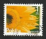 Sellos del Mundo : Europa : Polonia :  4431 - Flor, Girasol