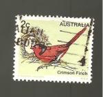 Sellos de Oceania - Australia -  RESERVADO MARIA ANTONIA