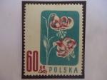 Sellos del Mundo : Oceania : Pitcairn : Gorro de Turk - Lirio de Mortagón (Lilum martagón) - Serie: Flores Protegidas.