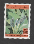 Sellos del Mundo : Asia : Afganistán : Planta con insectos parásitos
