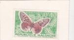 Sellos de Africa - Madagascar -  Mariposa