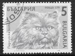 Sellos del Mundo : Europa : Bulgaria : Felis silvestris catus
