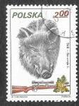 Sellos de Europa - Polonia -  2451 - Jabalí
