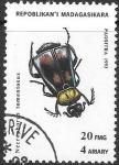 Sellos del Mundo : Africa : Madagascar :  insectos
