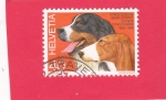 Sellos del Mundo : Europa : Suiza : perro de raza
