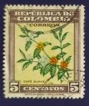 Sellos de America - Colombia -  Planta y flor de cafe