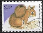 Sellos del Mundo : America : Cuba :  Jardin Zoologico de Habana - Sciurus vulgaris