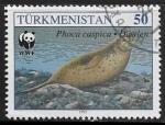 Sellos del Mundo : Asia : Turkmenistán : Phoca caspica