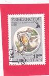 Sellos del Mundo : Asia : Uzbekistán : Pelícano dálmata (Pelecanus crispus)