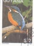 Sellos del Mundo : America : Guyana : ave