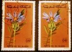 Sellos del Mundo : Africa : Marruecos : Naturaleza.Amberboa crupinoides