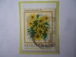 Sellos de America - Venezuela -  Oyedaea verbesinoides. DC. - Flora de Venezuela