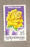 Sellos de Europa - Rumania -  Rosa variedad