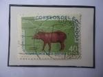 Sellos del Mundo : America : Ecuador : Tapirus Villosus- IV Centenario de la Fundación de Baeza (15579-1959)Por el Español Gil Ramírez Dáva