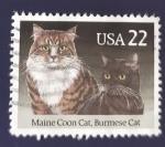 Sellos de America - Estados Unidos -  Gatos